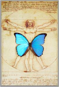 Leonardo w butterfly