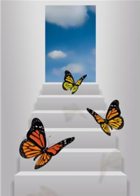Butterfly freedom image